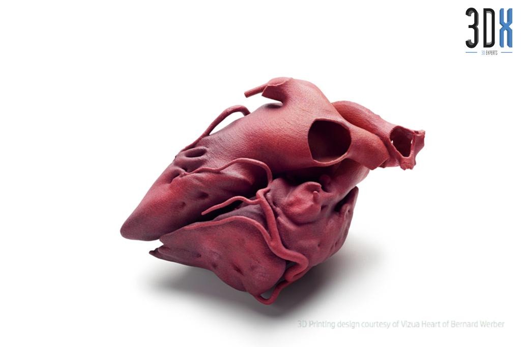 HP Jet Fusion 3D Druck Musterteil Herz gedruckt in Pa 12